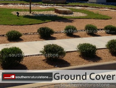 ground cover, mulch, texas